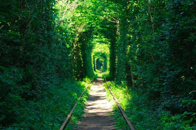 Tunnel of love Ukraine