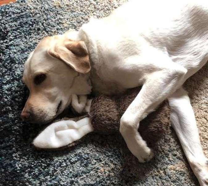 Toli with his rabbit plush toy