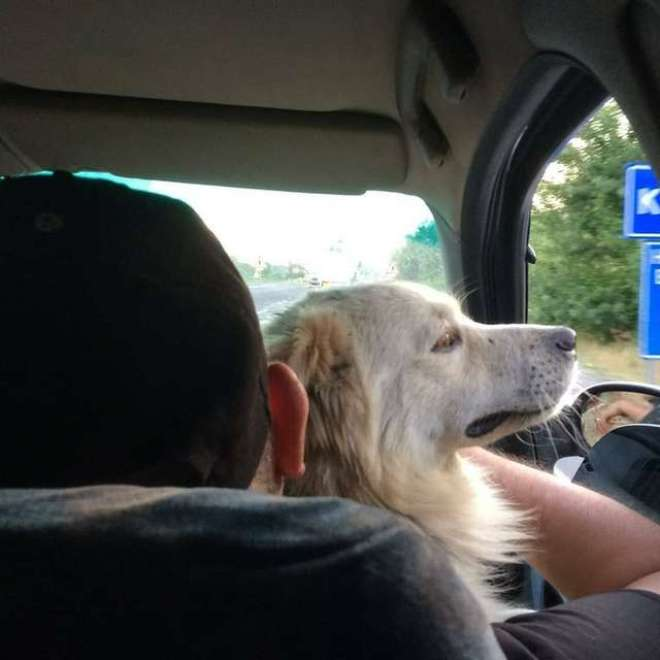 on the way to his home