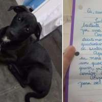 Woman gets letter from her neighbor — then realizes it's addressed to her dog