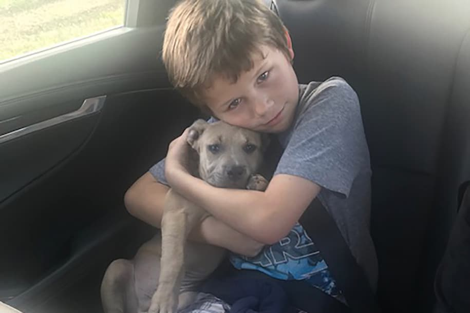 Young boy with hero dog.