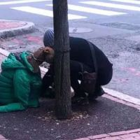 Woman covers dog with her own jacket so he can stay warm while waiting outside