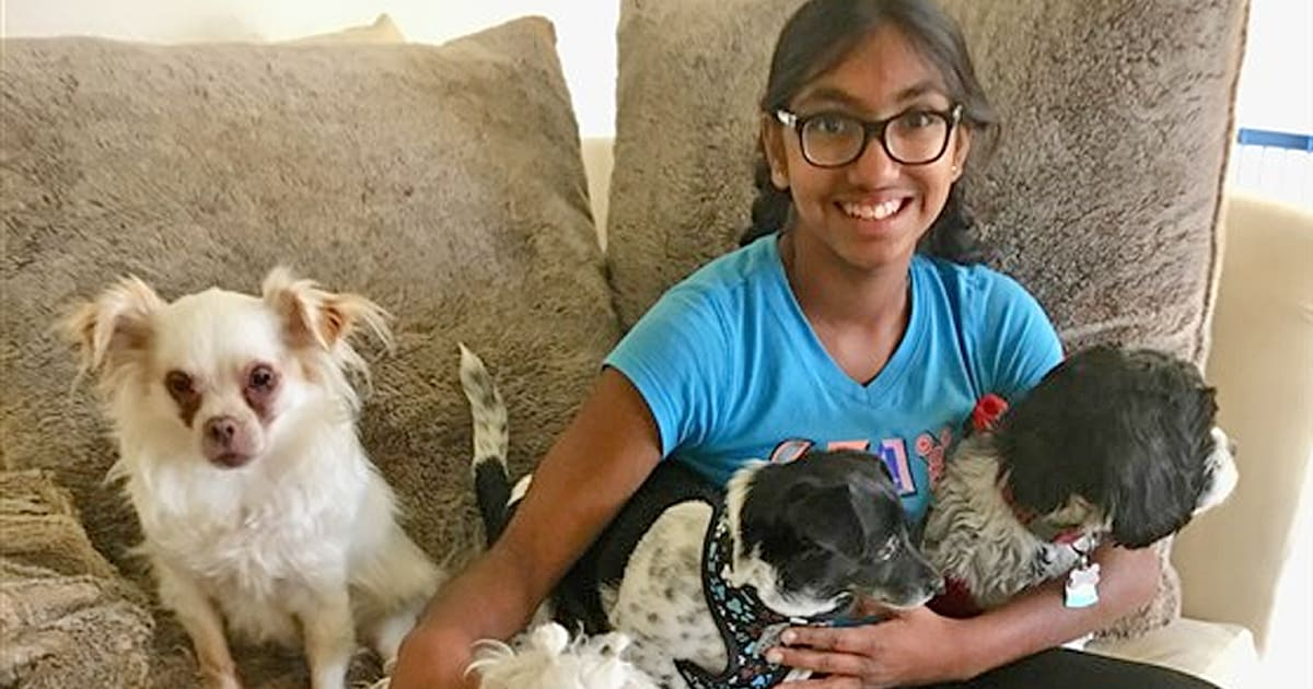 Adopted 14-year-old girl is helping senior dogs find a forever home — 'just like I did' - my positive outlooks