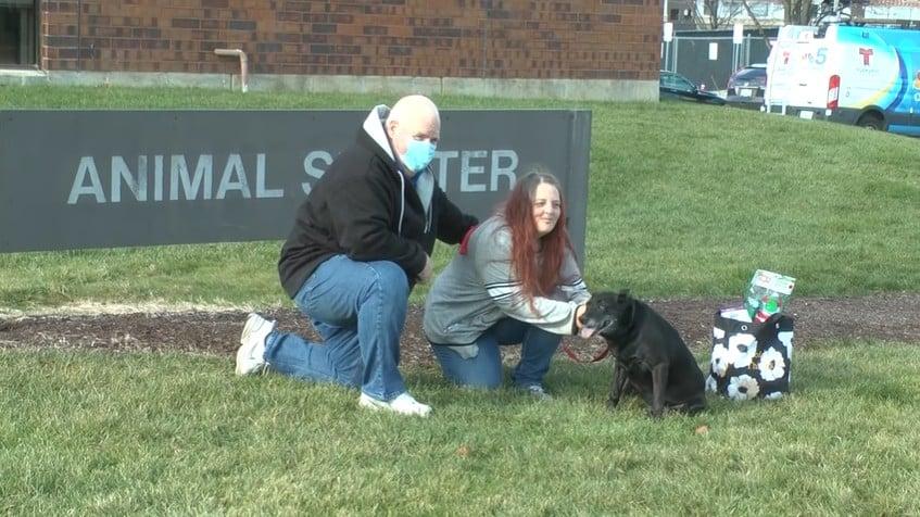 Lola reunited with her owners Debra Mejeur and Steve Mejeur