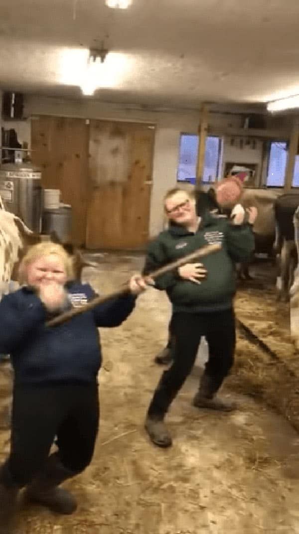 The sisters having fun while tending to the cows.