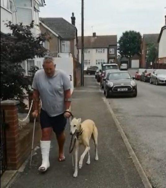 A man using crutches walking alongside his Lurcher dog