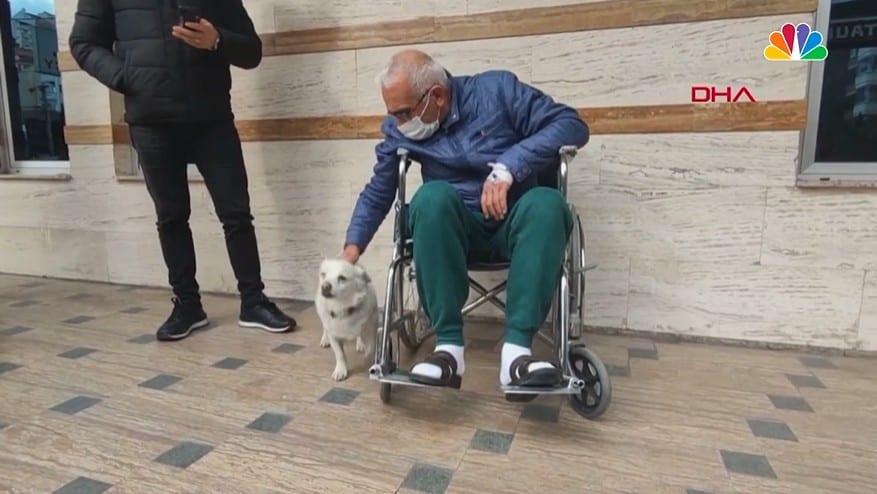 A man in a wheelchair petting his dog