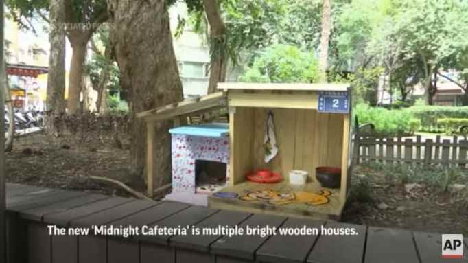 A small wooden house for stray cats
