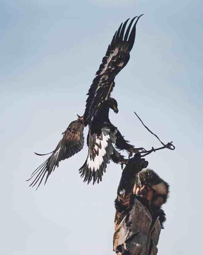 Охотник на орла со своим орлом