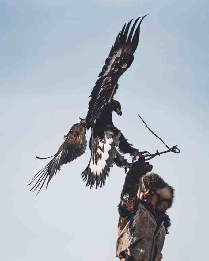An eagle hunter with his eagle