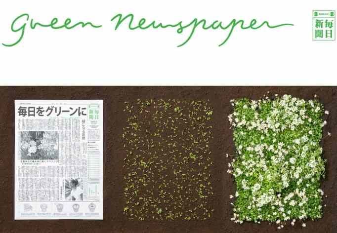 """A """"green newspaper"""" next to its sprouted flowers"""
