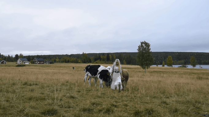 Jonna Jinton with a herd of cows