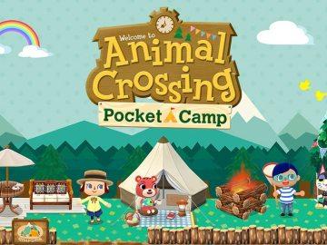 Pocket Camp Update