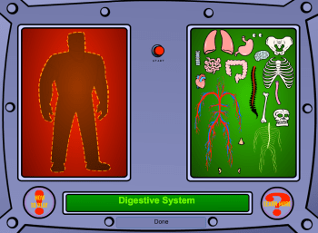 All Systems Go... Systems in the human body