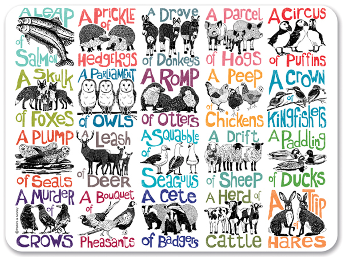 Nouns : Collective Nouns