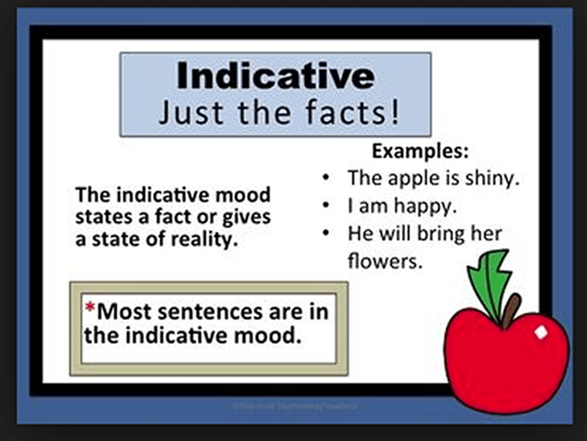 Verbs : The Indicative Mood