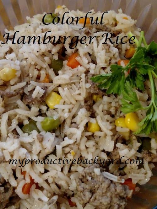Colorful Hamburger Rice