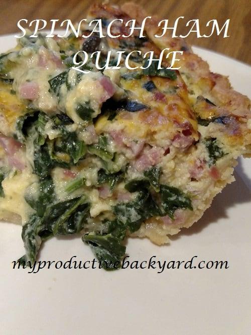 Spinach Ham Quiche