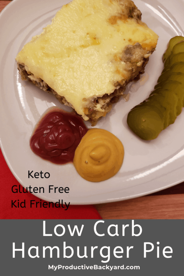 Low Carb Hamburger Pie