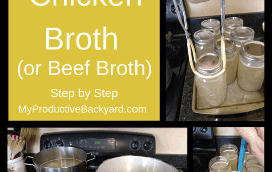 How to Can Chicken Broth or Beef Broth