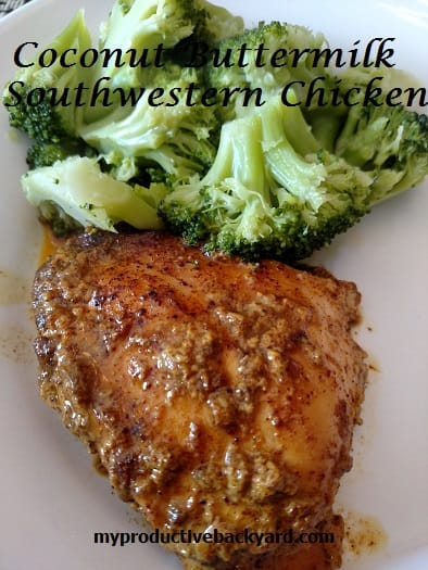 COCONUT BUTTERMILK SOUTHWESTERN CHICKEN