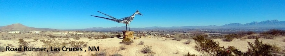 Road Runner Las Cruces 1