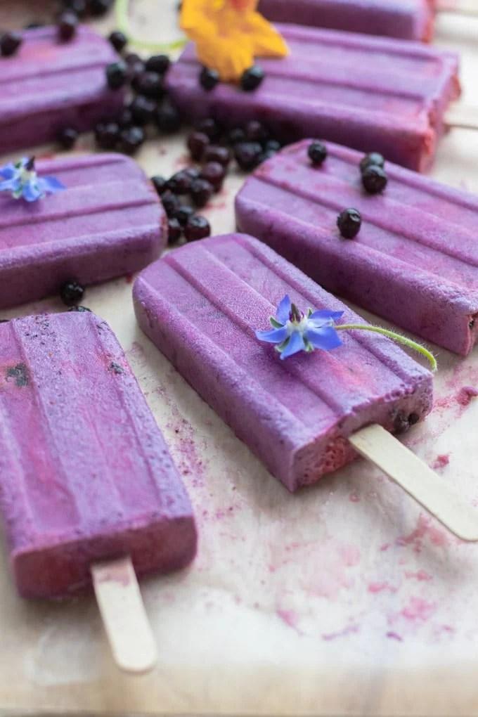 Blueberry Yogurt Popsicles