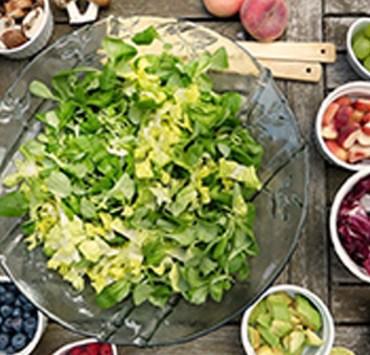 Different Diet Programs Explained