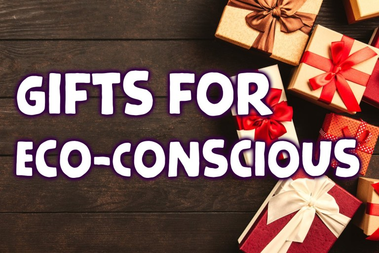 Christmas Buys for the eco-conscious