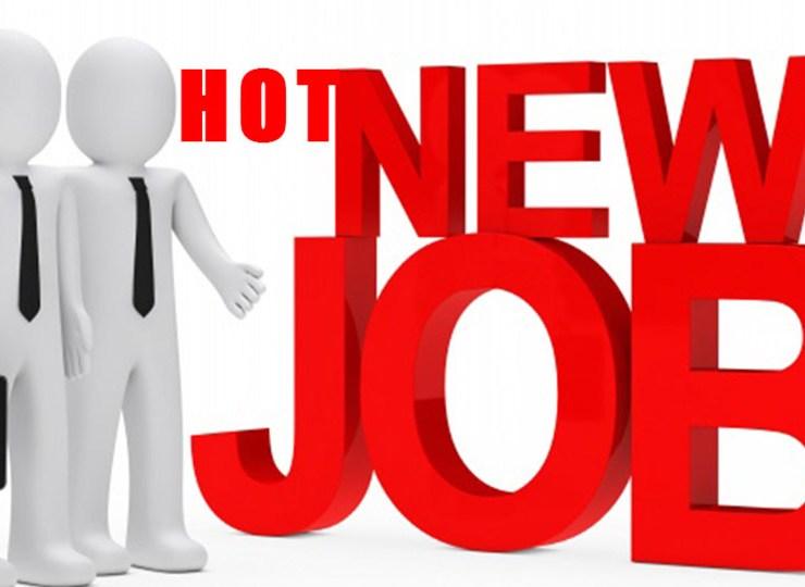 Ranggo Hot Jobs