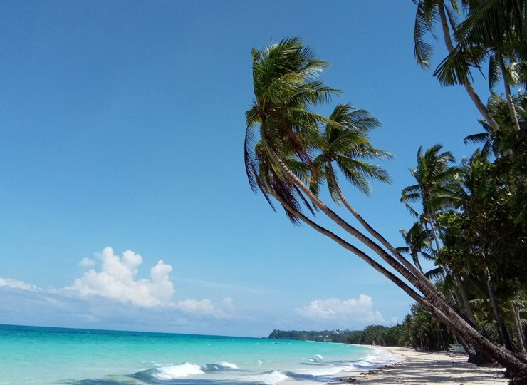 Palm Trees and sea on Boracay's famous White Beach