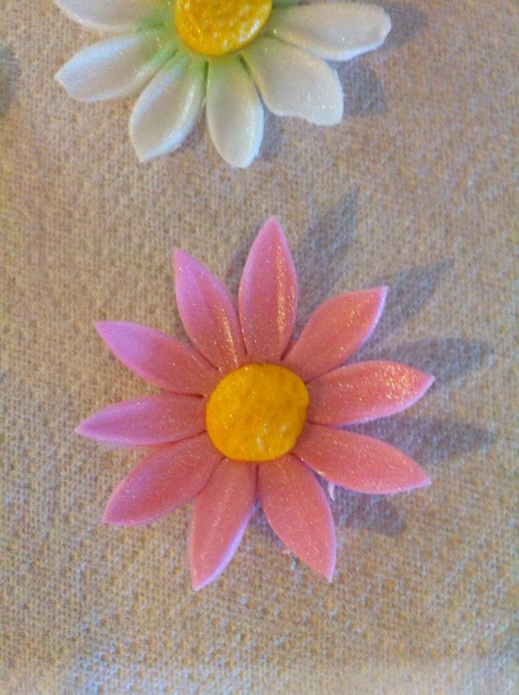 Fondant and Gum Paste Flowers (6/6)