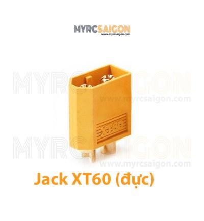 JACK XT60 đực