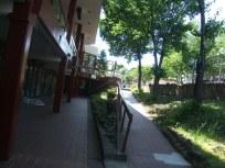 Nyack 2007 034
