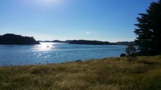 Utsikt från Grannesholmen