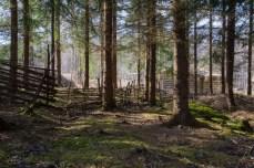 Lapphyttan Norberg