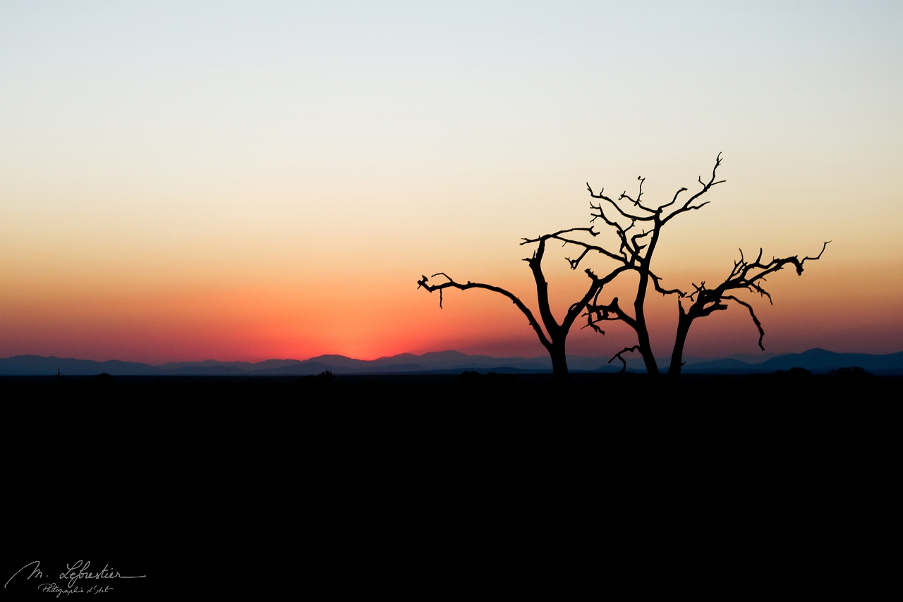 sunset in Hlane Royal National Park Swaziland eSwatini