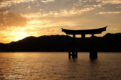 Sunset: Itsukushima shrine Torii gate Miyajima island Japan high tide