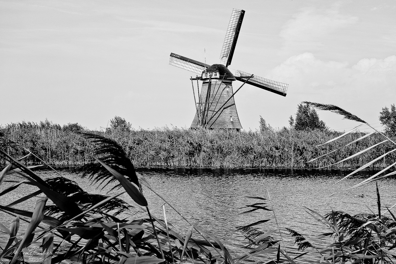 mills at Kinderdijk, Netherlands