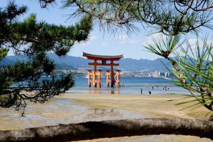 Itsukushima shrine Miyajima island Japan at low tide amazing view