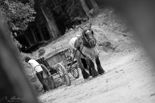 photo in black and white of a man getting off a horse carriage in the Guedelon castle in burgundy france