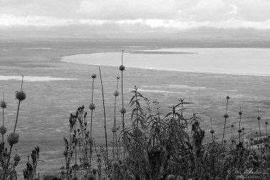 View on the Ngorongoro crater from the Top