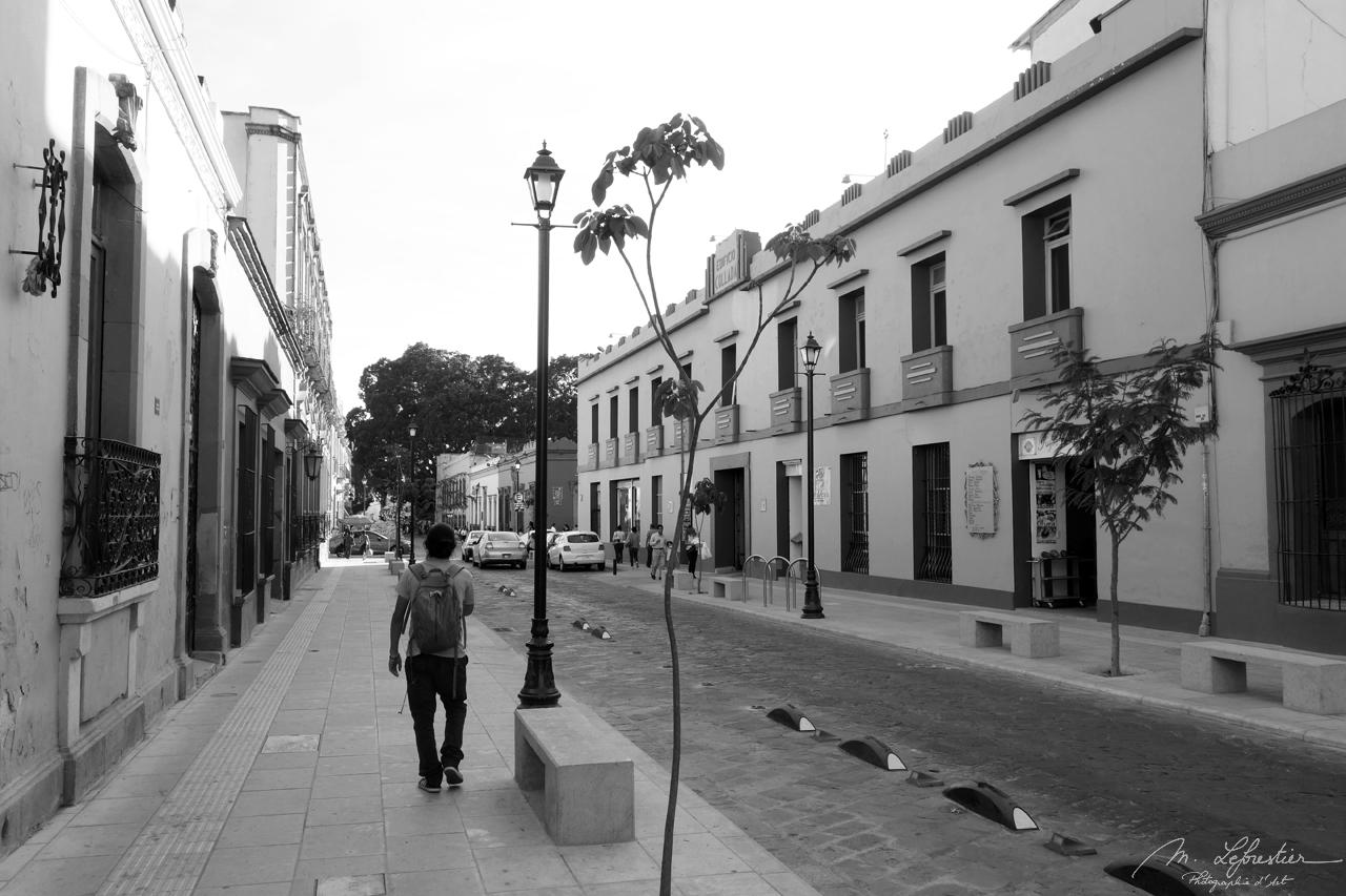 beautiful city center of Oaxaca Mexico