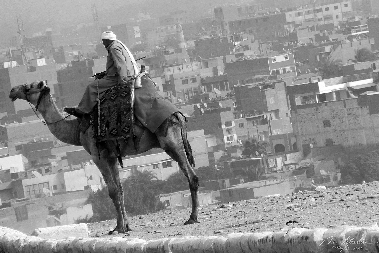 view of the city from Giza with a local on a horse