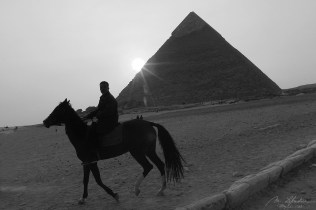 pyramids of Giza at sunset with a local on a horse