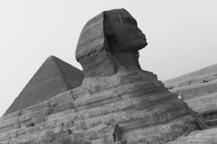 view on the Sphinx and one pyramid in Giza Egypt