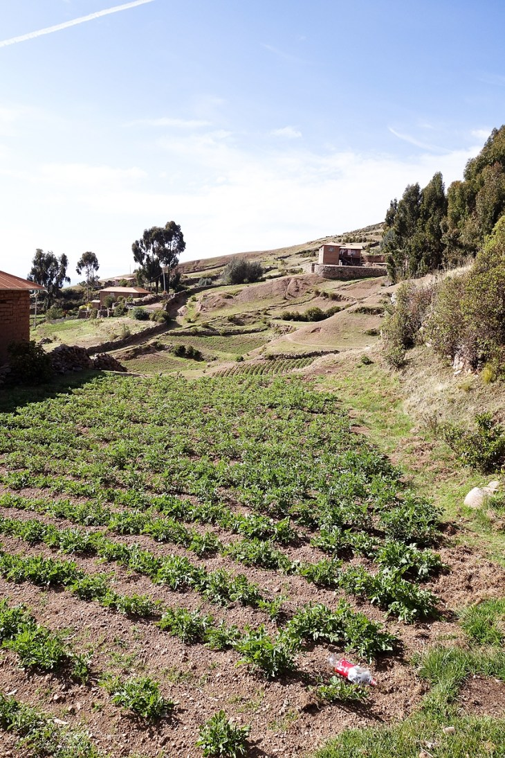 lake-titicaca-19