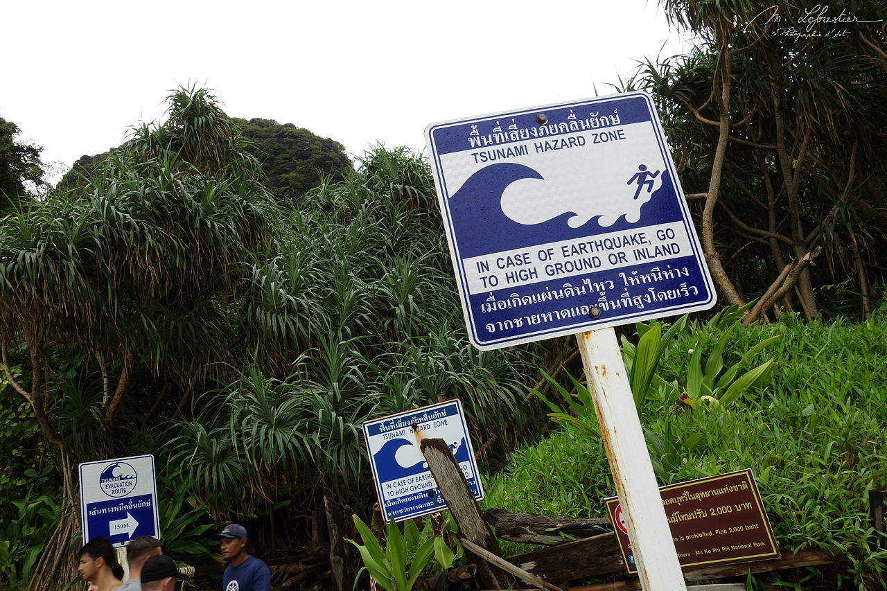 Tsunami Hazard Zone sign in Krabi Maya Bay in Thailand