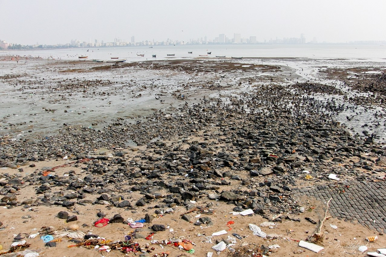 View of Mumbai from Versova beach in 2011 before the beach clean up action