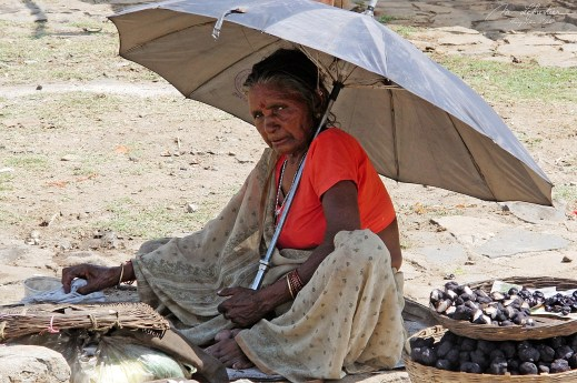 portrait of a local older woman protecting herself from the sun with an umbrella and staring at me in Marble Rocks India